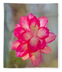 Christmas Cactus Bokeh Fleece Blanket