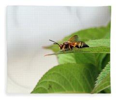 Cicada Killer Fleece Blanket