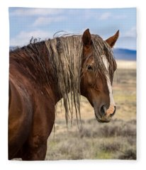 Cimarron - Wild Mustang Stallion Fleece Blanket