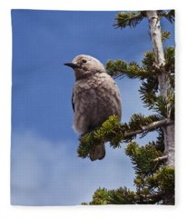 Clark's Nutcracker In A Fir Tree Fleece Blanket