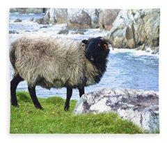 Clew Bay Sheep Fleece Blanket