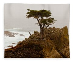 Coastline Cypress Fleece Blanket