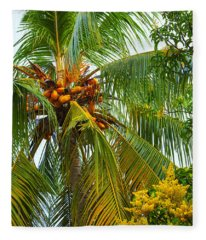 Coconut Palm In Tropical Garden Fleece Blanket