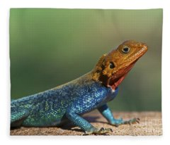 Colorful Awesomeness... Fleece Blanket