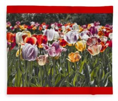 Colorful Tulips In The Sun Fleece Blanket