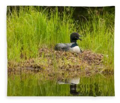 Common Loon Nesting Fleece Blanket