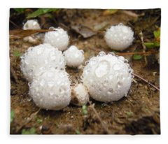 Common Puffball Dewdrop Harvest Fleece Blanket