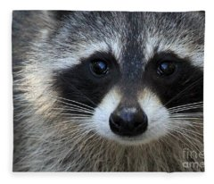 Common Raccoon Fleece Blanket