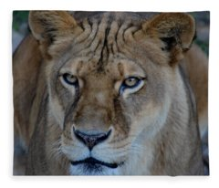 Concerned Lioness Fleece Blanket