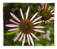 Cone Flower - 1 Fleece Blanket