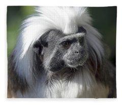 Cottontop Tamarin Saguinus Oedipus Fleece Blanket