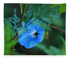 Country Blue Fleece Blanket