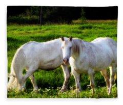 Courtship Fleece Blanket
