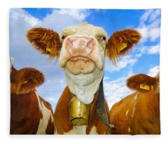 Cow Looking At You - Funny Animal Picture Fleece Blanket