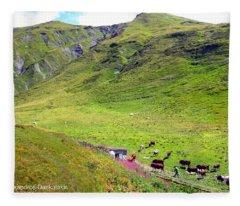 Cows In A Valley Fleece Blanket
