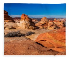 Coyote Lines Fleece Blanket