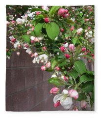 Crabapple Blossoms And Wall Fleece Blanket