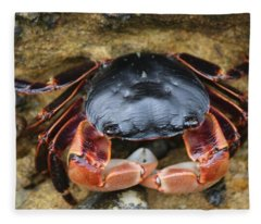 Crabby Pants  Fleece Blanket