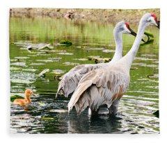 Crane Family Goes For A Swim Fleece Blanket