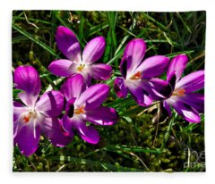 Crocus In The Grass Fleece Blanket