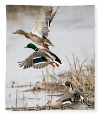 Crowded Flight Pattern Fleece Blanket