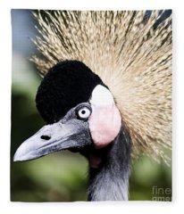 Crowned Heron 2 Fleece Blanket