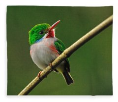 Cuban Tody Fleece Blanket