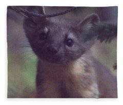 Curiosity Fleece Blanket