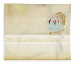 Curious Cordon Bleu Finch  Fleece Blanket
