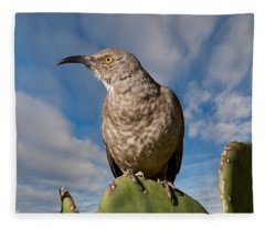 Curve-billed Thrasher On A Prickly Pear Cactus Fleece Blanket