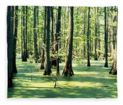 Cypress Trees In A Forest, Shawnee Fleece Blanket