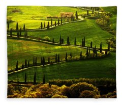 Cypresses Alley Fleece Blanket