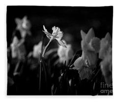 Daffodils In Black And White Fleece Blanket