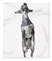 Dancing Dog Fleece Blanket