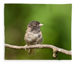 Dark Eyed Junco Fleece Blanket