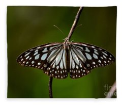 Dark Glassy Tiger Butterfly On Branch Fleece Blanket