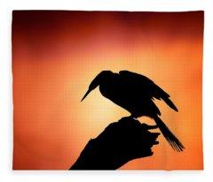 Darter Silhouette With Misty Sunrise Fleece Blanket
