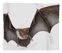 Daubentons Bat Myotis Daubentonii - Murin De Daubenton-murcielago Ribereno-vespertilio Di Daubenton Fleece Blanket