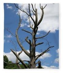 Dead Tree Fleece Blanket