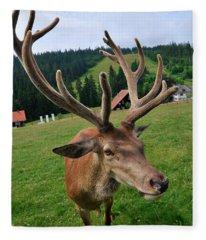 Deer Cervidae With Impressive Antlers Fleece Blanket