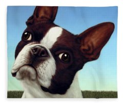 Boston Terrier Fleece Blankets