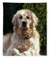 Dog On Guard Fleece Blanket