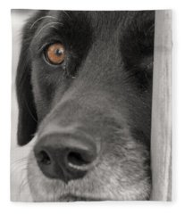 Dog Peek A Boo Fleece Blanket