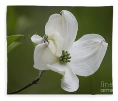 Dogwood Blossom Fleece Blanket