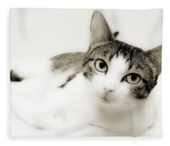 Dreamy Cat 2 Fleece Blanket
