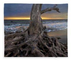 Driftwood On Jekyll Island Fleece Blanket