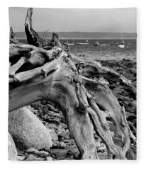 Driftwood On Rocky Beach Fleece Blanket