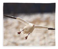 Dropping In Fleece Blanket