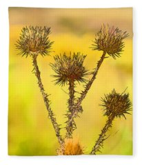 Dry Brown Thistle Fleece Blanket