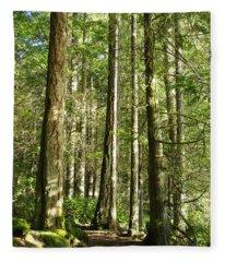 East Sooke Park Trail Fleece Blanket